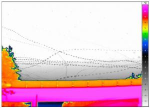 bats_trajectory_example